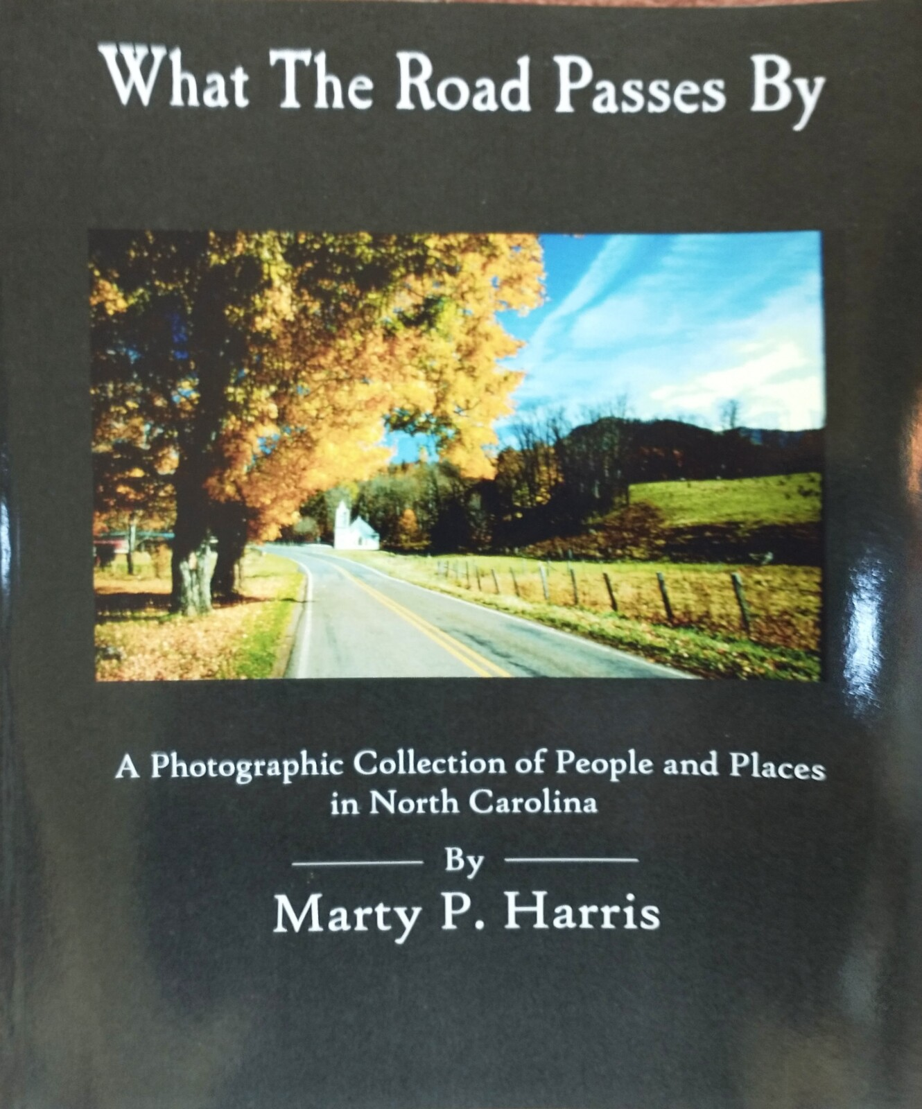 What the Road Passes By by Marty P. Harris